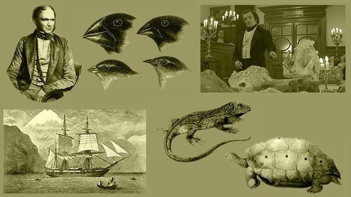Darwin's Diary