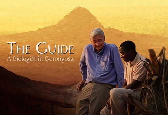The Guide: A Biologist in Gorongosa