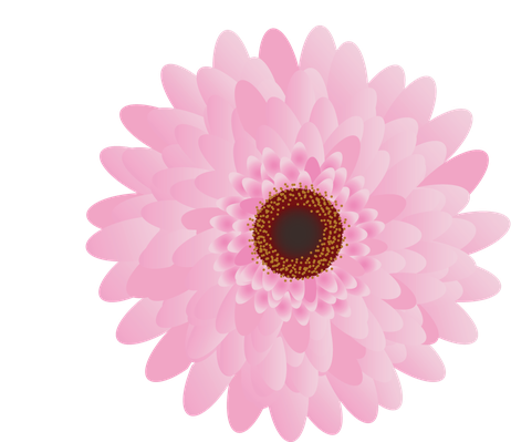 Colourful Gerbera Set | Clipart