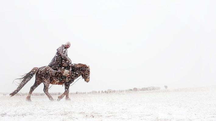 Mongolia's Nomads | Global Oneness Project