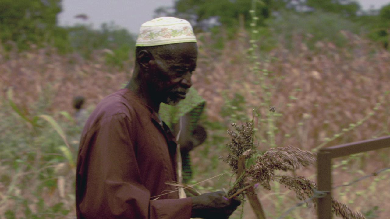 Farming the Desert | EARTH A New Wild
