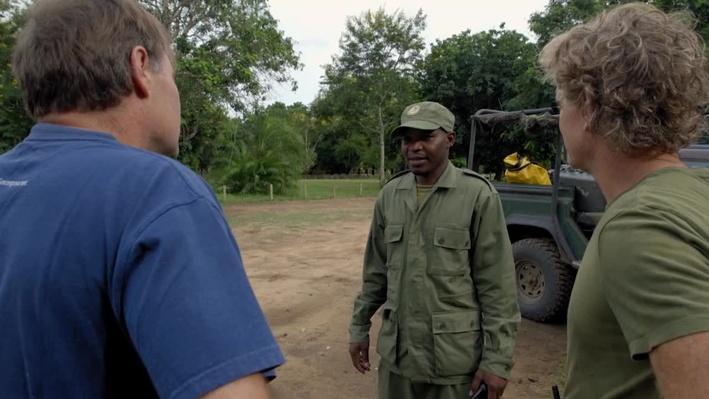 Human Elephant Conflict | Gorongosa Park: Rebirth of Paradise