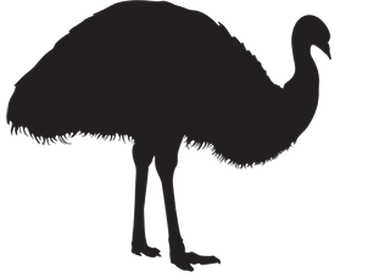 Animal Silhouettes - Emu | Clipart
