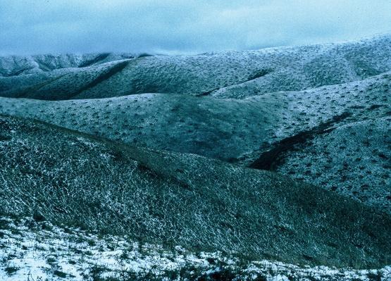 Snow Leopard Grasslands | Global Oneness Project