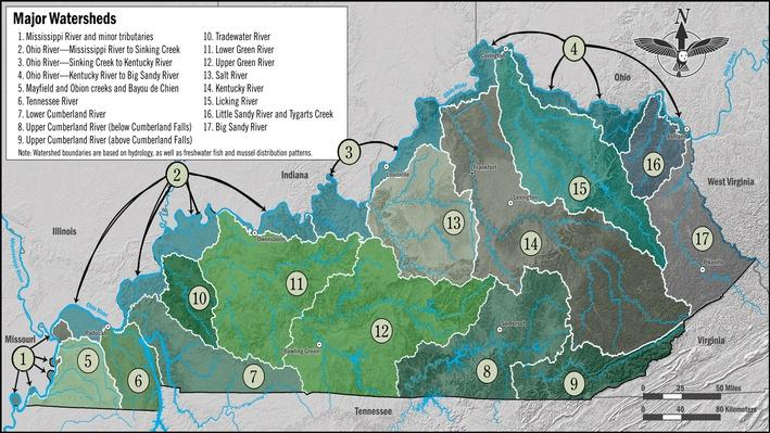 Watersheds in Kentucky