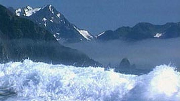 Alaska Tsunami