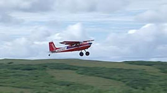 Alaska Native Pilots