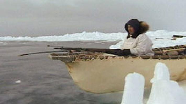 Iñupiaq Whale Hunt