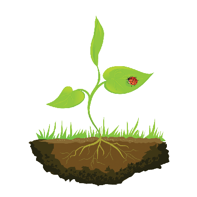 Growing Shoots Out of the Ground | Clipart