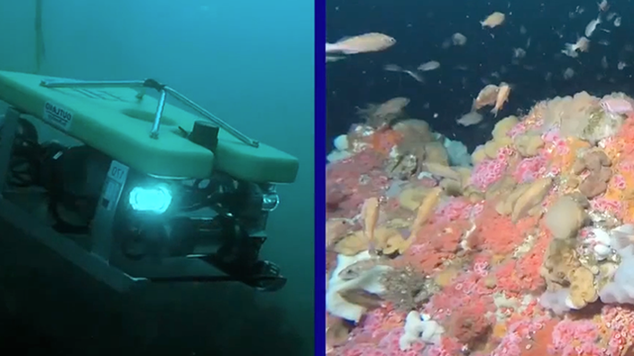Exploring the Ocean with Robots | NOAA