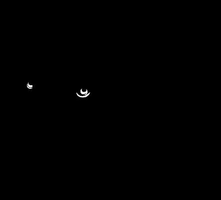 Bear Head | Clipart