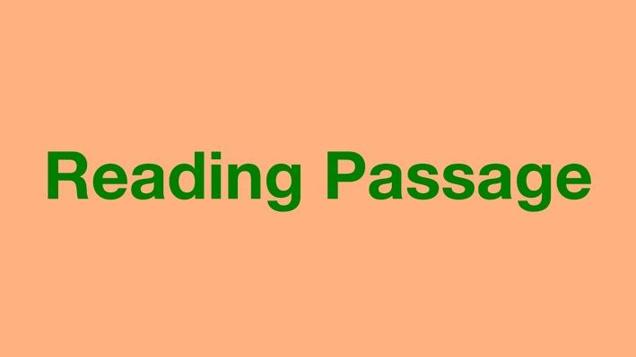A Happy Saturday / Un sábado  feliz | Reading Passage