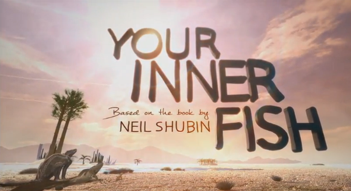 Your inner fish classroom resources pbs learningmedia for Neil shubin your inner fish