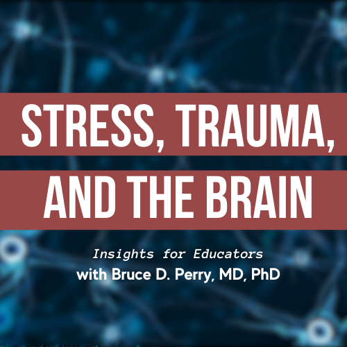 Stress, Trauma and the Brain | Insights for Educators