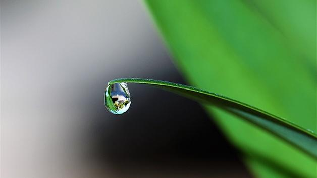 Sustaining Fresh Water Lesson Plan