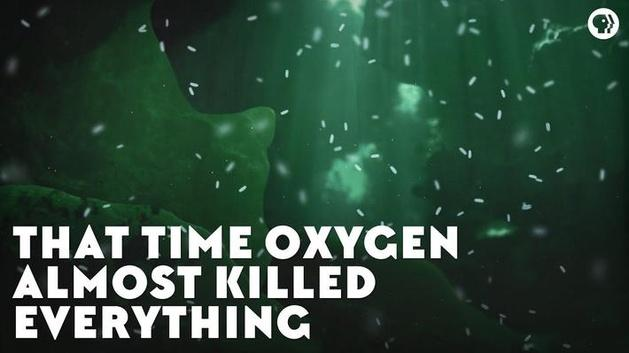 The Time Oxygen Almost Killed Everything