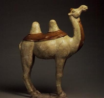 Pottery model of a standing camel, Chinese, T'ang Dynasty, 618-90 (ceramic)