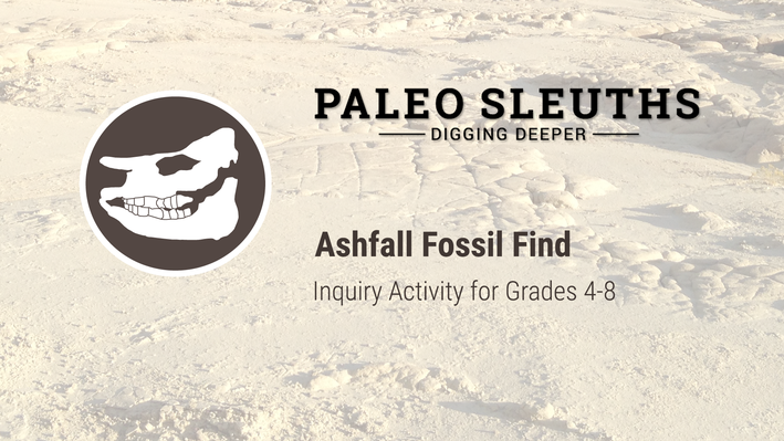 Paleo Sleuths - Ashfall Fossil Finds