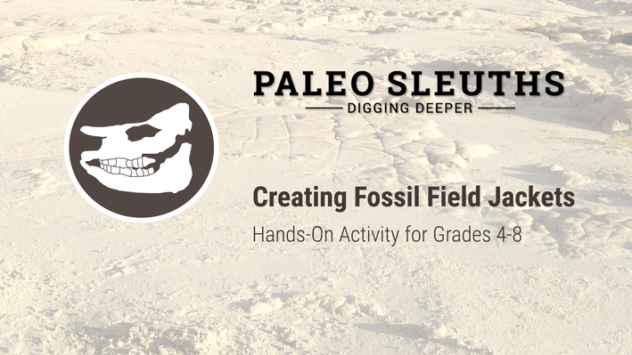Paleo Sleuths - Creating Fossil Field Jackets