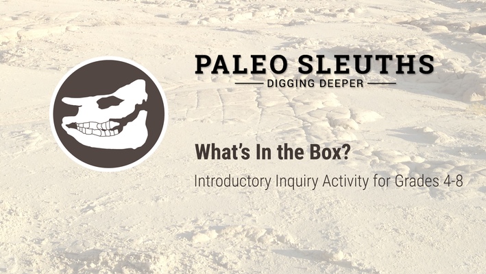 Paleo Sleuths - What's in the Box?