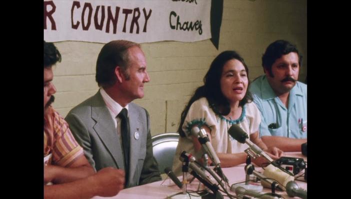 ¿La Historia de Quién? ¿La Historia de Quién?: El Ejemplo de Dolores Huerta: Lección | Dolores