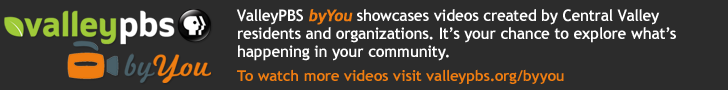 PBS Video - Companion Ad