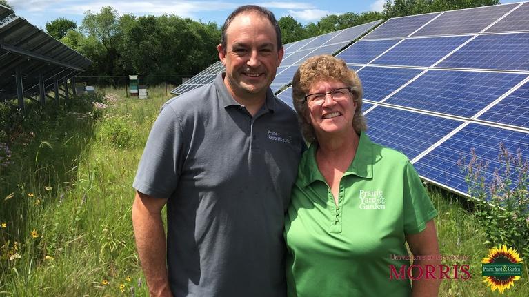 Prairie Yard & Garden: Bee-u-tiful Solar Energy