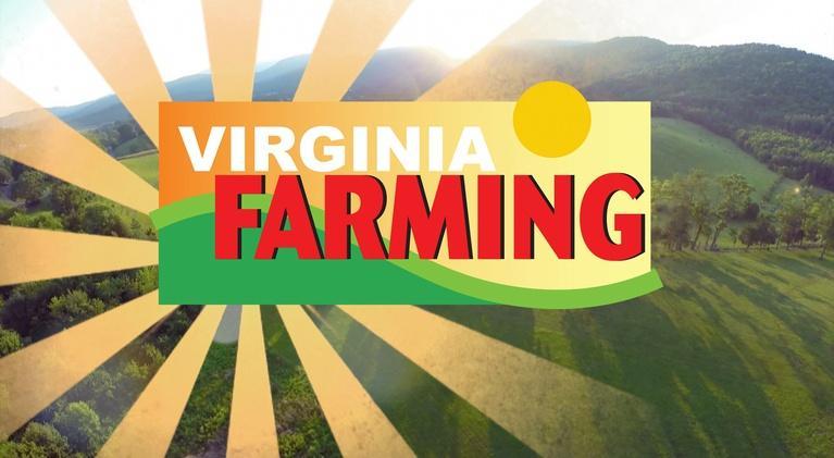 Virginia Farming: Grain Roasting for Added Value