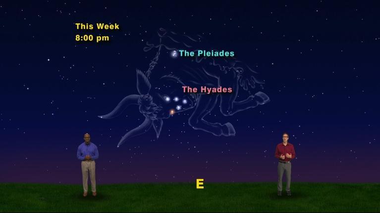 """Star Gazers: """"The Pleiades and Their Cousins"""" Nov 19 - 25th, 2018  1 Min"""