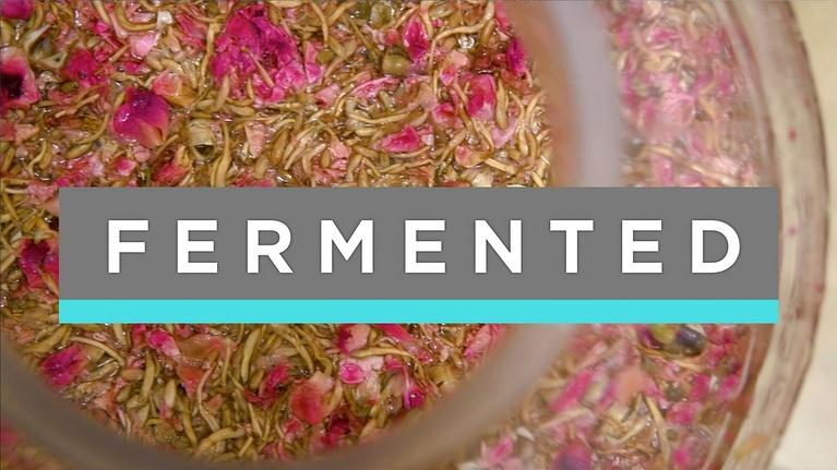 Feast TV: Fermented
