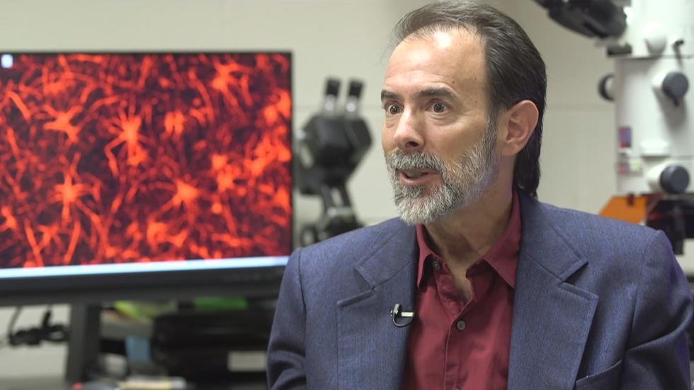 O. Max Gardner Award: Dr. Ben Bahr image