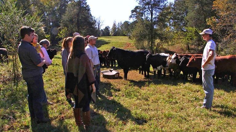 Palmetto Scene: Farm to Table Chef