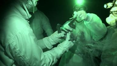Virus Hunter: Monitoring Nipah Virus in Bat Populations