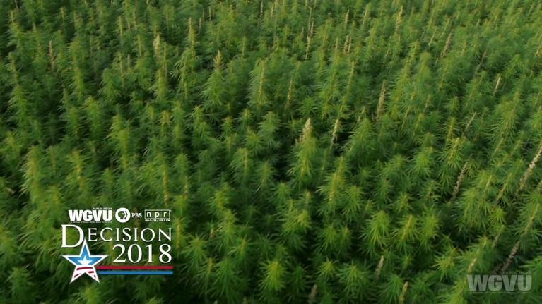 WGVU Presents: Decision 2018 - Recreational-Use Marijuana