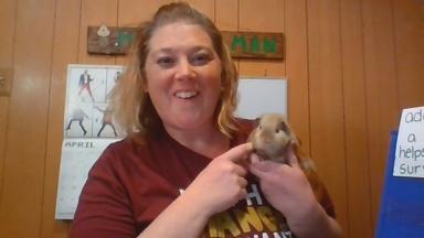 Animal Adaptations - Dana Skillman - Fourth Grade