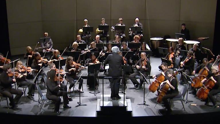 UNC-TV Arts: Maestros: Chamber Orchestra of the Triangle