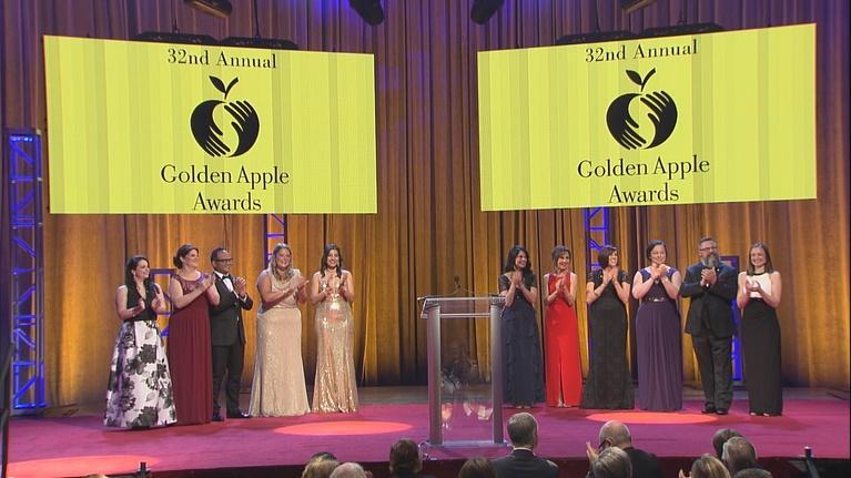 Golden Apple Awards for Excellence in Teaching & Leadership: Golden Apple Awards 2017
