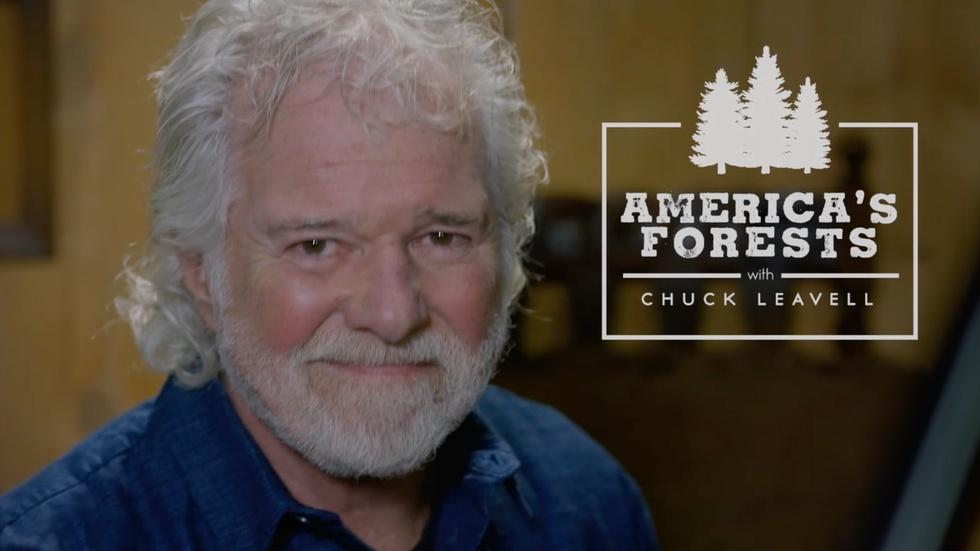 America's Forests with Chuck Leavell image