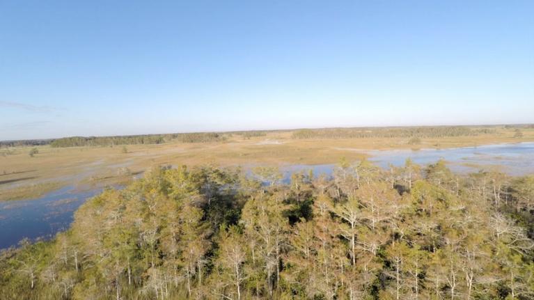 Battleground Everglades: Battleground Everglades Series Trailer