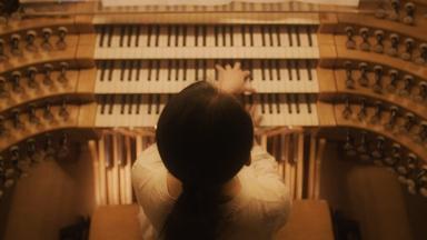 Trailer | Pipe Dreams