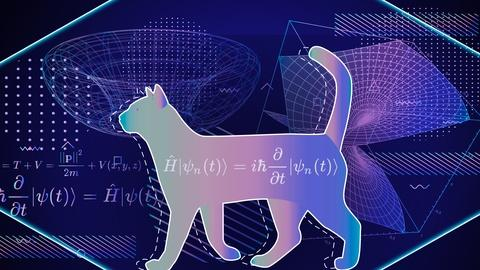 PBS Space Time -- Does Quantum Immortality Save Schrödinger's Cat?