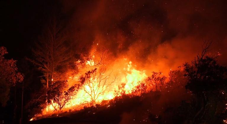 ViewFinder: Waking Up to Wildfires