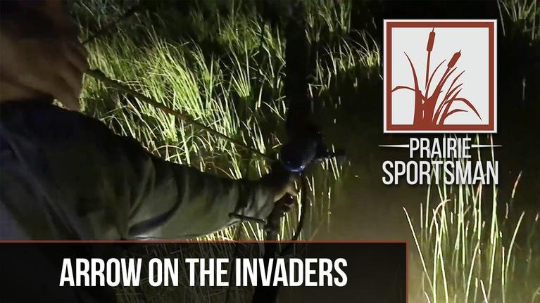 Prairie Sportsman: Arrow on the Invaders