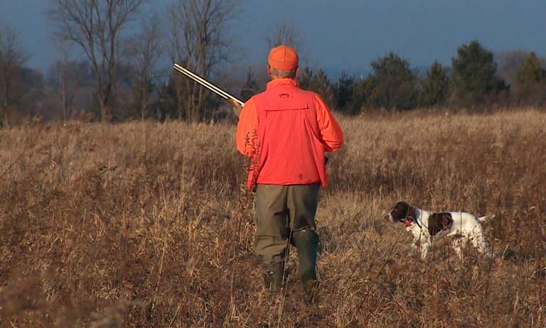 Hunting Dog Training Tips/Great Lakes By Kayak #3613