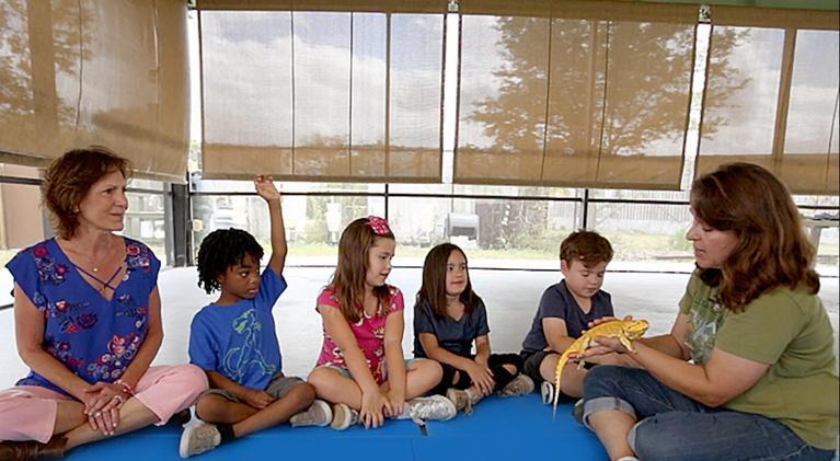 KidVision Pre-K: KidVision Pre-K Wildlife Nature Center Field Trip