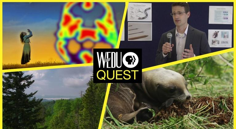 WEDU Quest: Episode 403