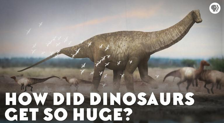 Eons: How Did Dinosaurs Get So Huge?