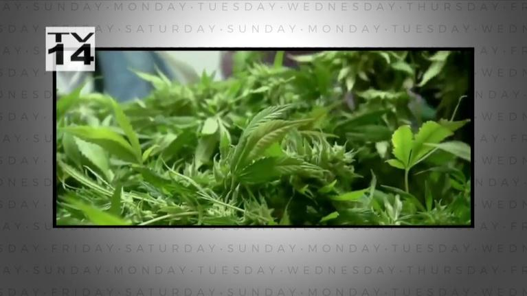 Indiana Week in Review: Marion County's Marijuana Strategy - October 5, 2019
