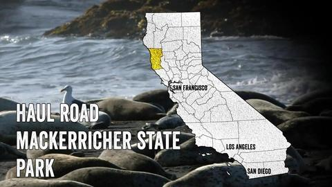 California Coastal Trail -- Haul Road: MacKerricher State Park