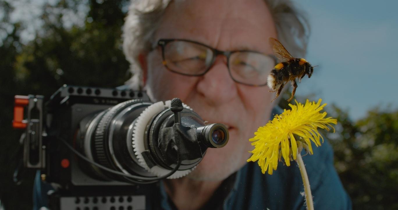 Camera Bee Flower Filmmaker